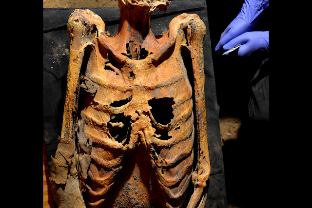 Intricate animal and flower tattoos found on Egyptian mummy