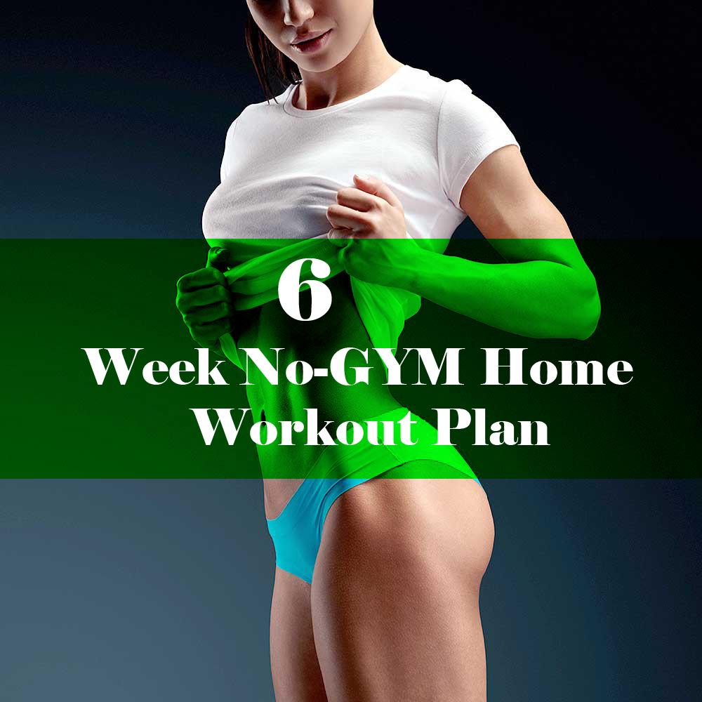 6 week gym plan pdf