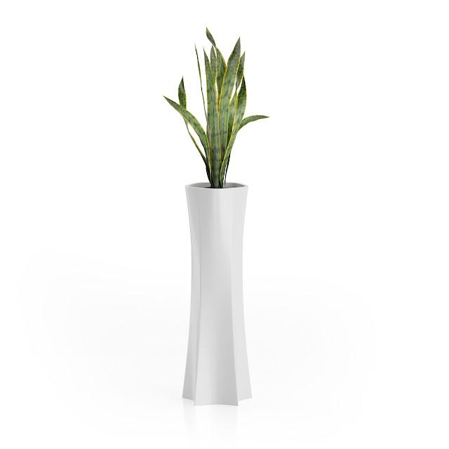 3D model free -  Plants_05