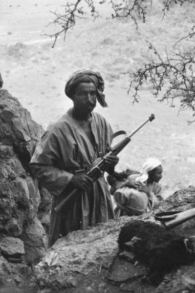 Warfare History Blog Guerrilla War For Algeria