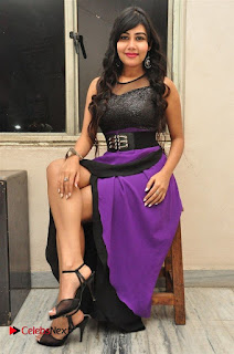 Telugu Actress Rachana Smith Stills at Money is Honey Audio Release  0093.jpg