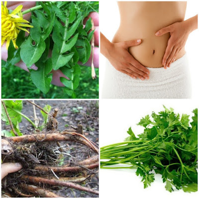 6 Herbal Infusions To Cleanse Your Body