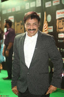 Celebrities sizzling Exclusive Pics at IIFA Utsavam Awards 2017  Day 2  HD Exclusive 33.JPG