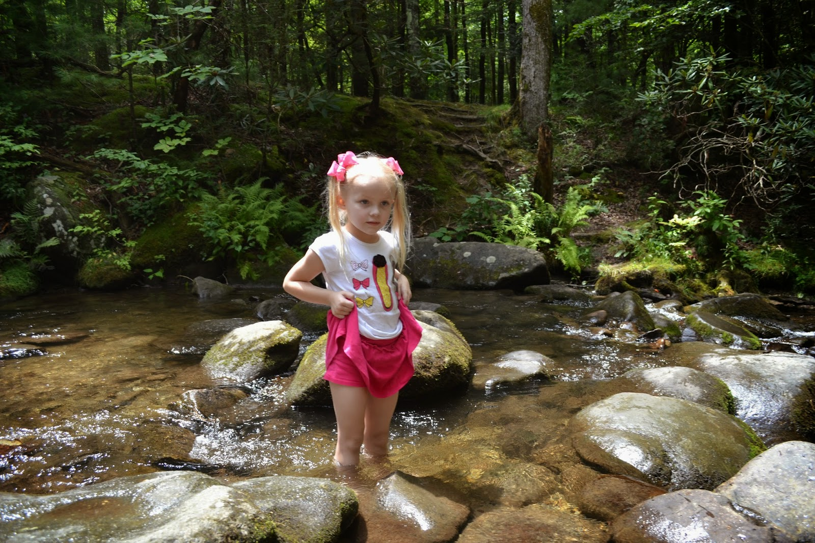 In the creek at Cades Cove