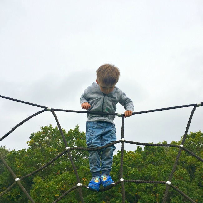 boy-at-top-of-climbing-frame