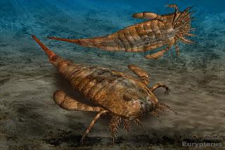 Resultado de imagen de eurypterus