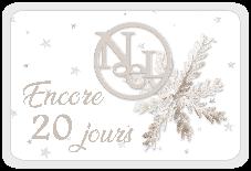 Le Noël blanc de DCS - 5