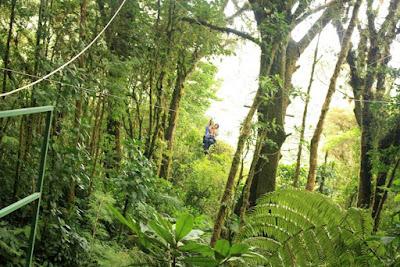 Canopy de Selvatura Park en Monteverde