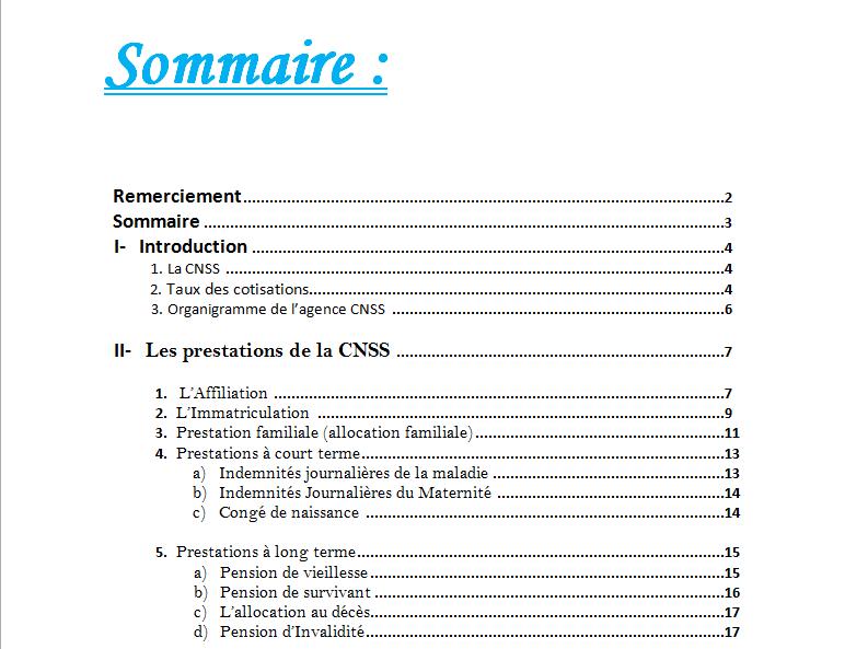 Pdf Exemple De Rapport De Stage Cnss