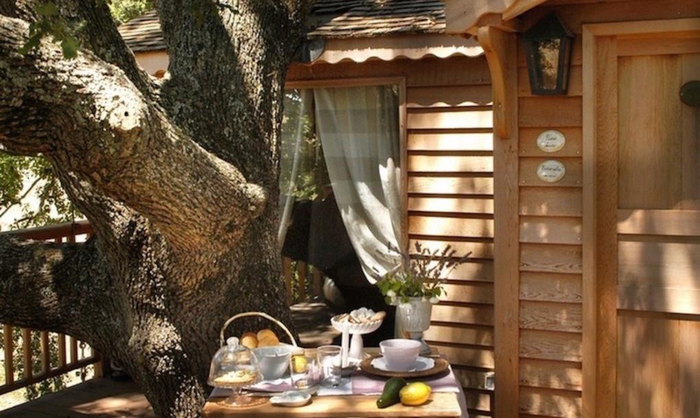 DIY%2BLuxury%2BTree%2BHouses%2B%252810%2529 10 DIY Luxury Tree Houses Interior