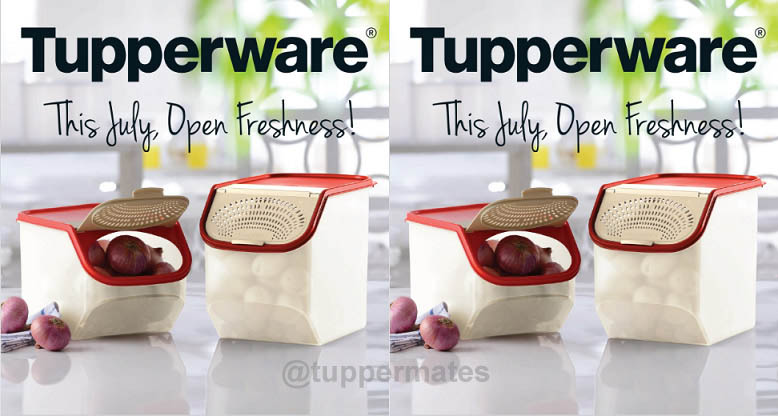 tupperware india flyer july 2016 tuppermates. Black Bedroom Furniture Sets. Home Design Ideas