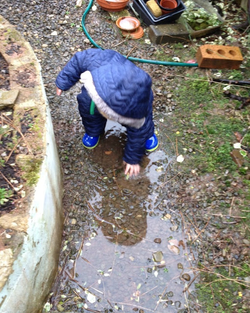 toddler crouched in puddle touching the water with his hand