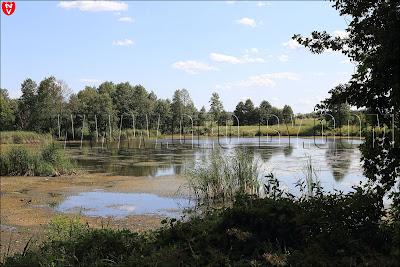 Усадебно-парковый ансамбль Рейтанов. Озеро 'Став'