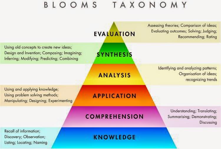 Blooms Taxonomy Essay Sample