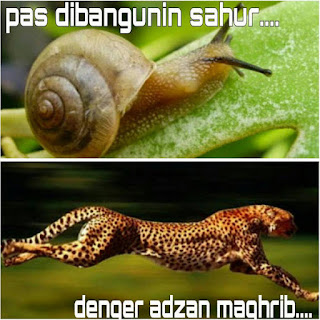 Pas dibangunin sahur vs denger adzan maghrib