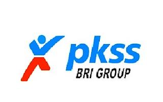 Lowongan Kerja Tingkat SMA Terbaru PT Prima Karya Sarana Sejahtera / PKSS (Bank BRI Group)