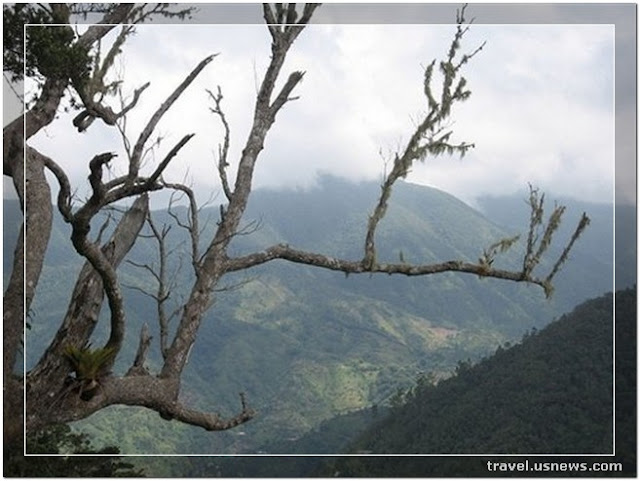 Blue Mountains National Park  - Top 7 Best Places to Travel in Jamaica at Least Once in Your Life Time