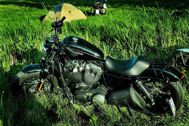 Harley Davidson Bike on Grass