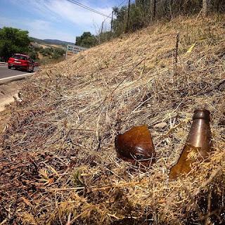 Al cortar la hierba verde en los pueblos o al quemarla con herbicidas se mata también el alimento de los polinizadores y se aumenta mucho el riesgo de incendios.