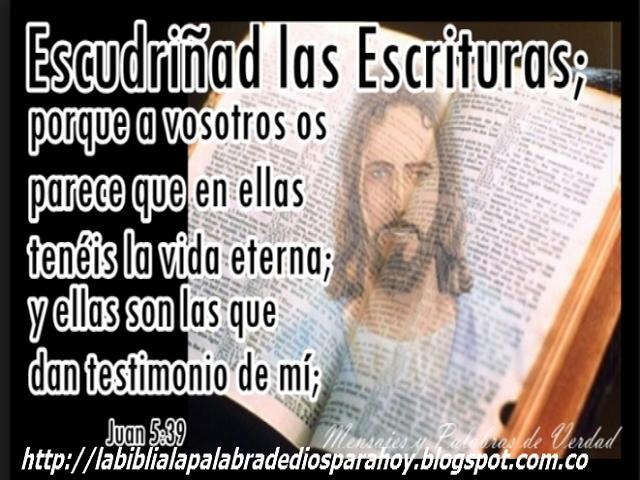 Santa biblia dios habla hoy