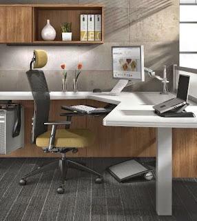 Ergonomically Correct Office Interior