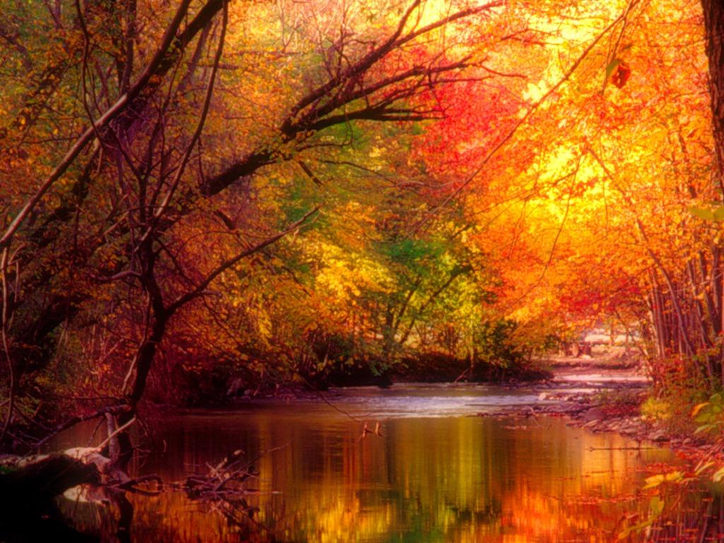 free seasonal wallpaper - photo #8