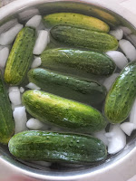 covering cucumbers with extra water