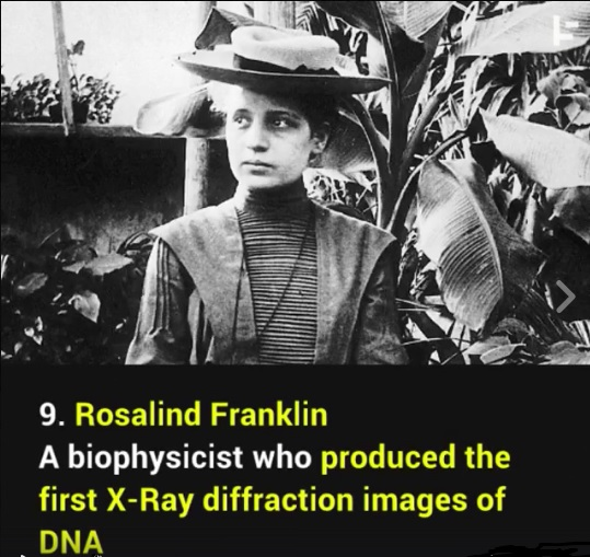Rosalind franklin is famous for which contribution to the study of dna?