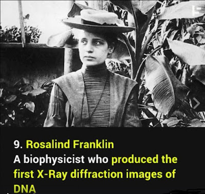 Did Rosalind Franklin Produce The First X Ray Diffraction