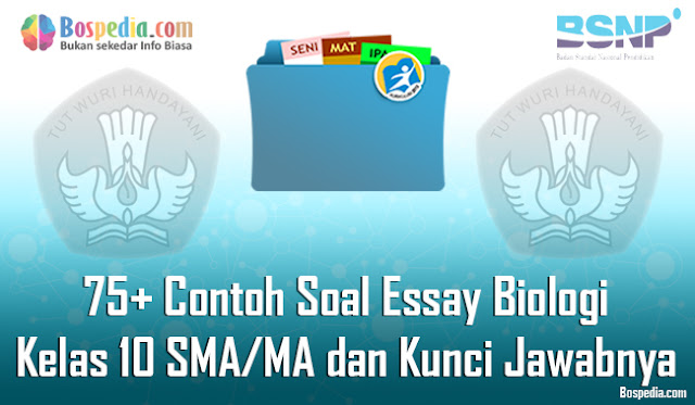 pada kesempatan kali ini admin ingin berbagi tentang Soal Essay yang di kumpulkan menjadi Lengkap - 75+ Contoh Soal Essay Biologi Kelas 10 SMA/MA dan Kunci Jawabnya Terbaru