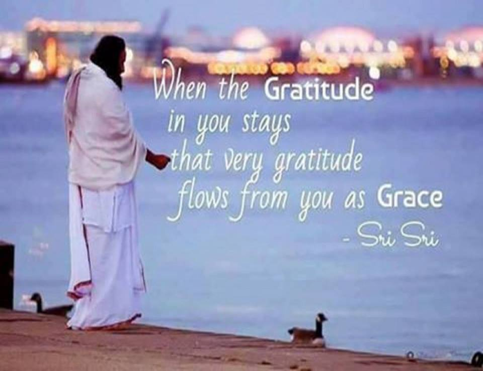 Quote On Gratitude | Knowledge | Life By Sri Sri Ravishankar
