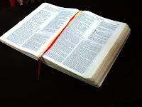O cuidado do pastor e a restauração de Seu rebanho