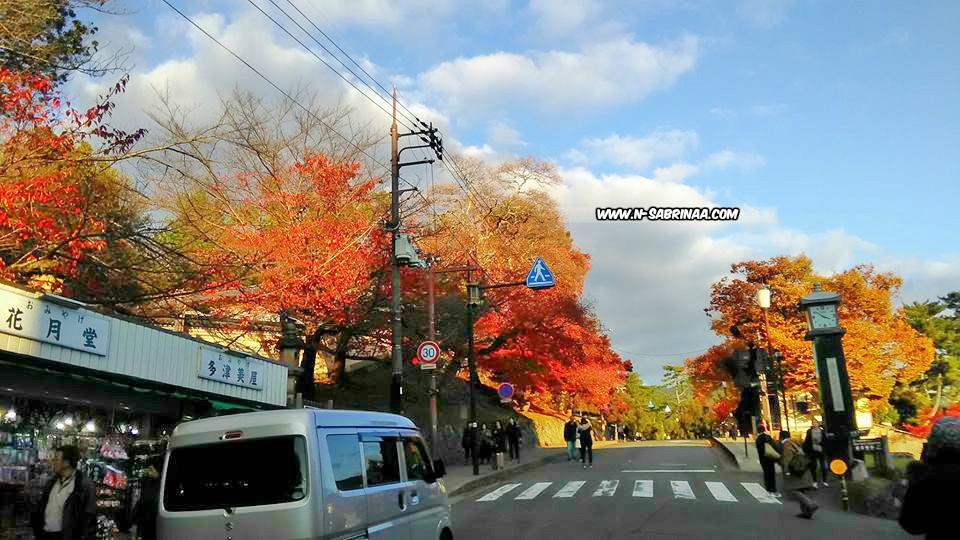 pemandangan indah di Nara Jepun