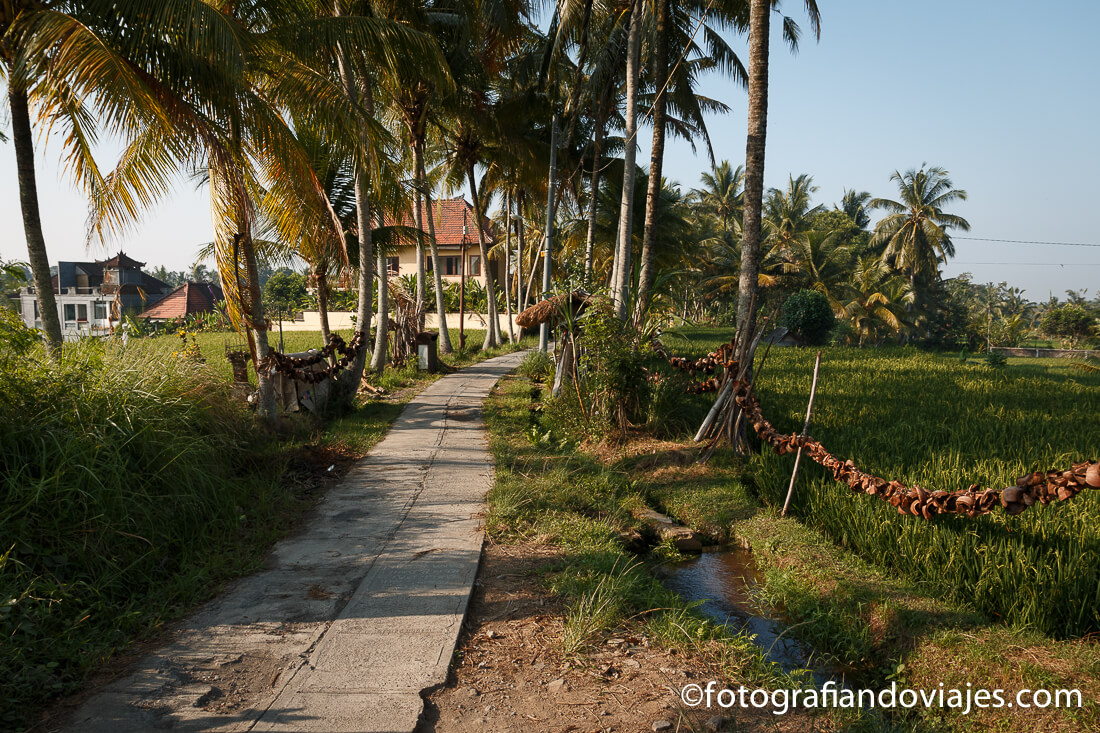 Hotel Masia Villa Ubud, en Bali