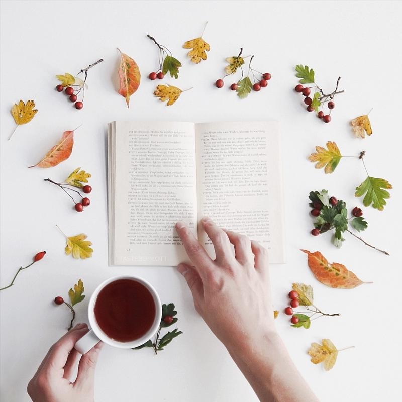 Favoriten für den Oktober   Reading Fall Tea Flatlay   October Favourites   Tasteboykott