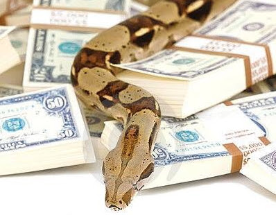 jamb money swallowing snake
