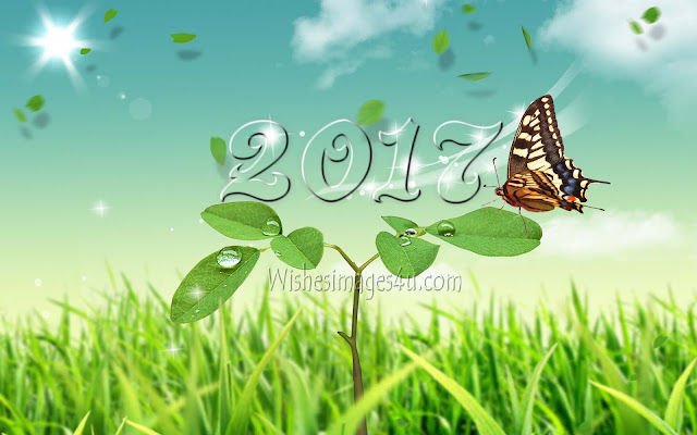 New year 2017 Full HD Nature Images Download For Desktop/PC