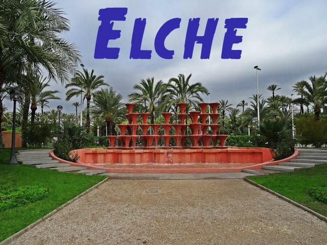 okolice Alicate co warto zwiedzić? Elche gaj palmowy