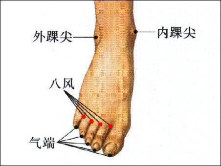 八風穴位 | 八風穴痛位置 - 穴道按摩經絡圖解 | Source:zhongyibaike.com