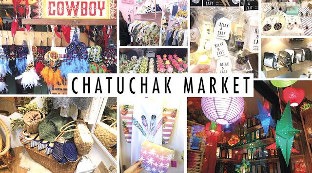 Khám phá chợ nhím kiểng Chatuchak