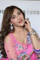 Angela Krislinzki Rogue Movie Fame Telugu Actress in Saree Backless Choli 023.JPG