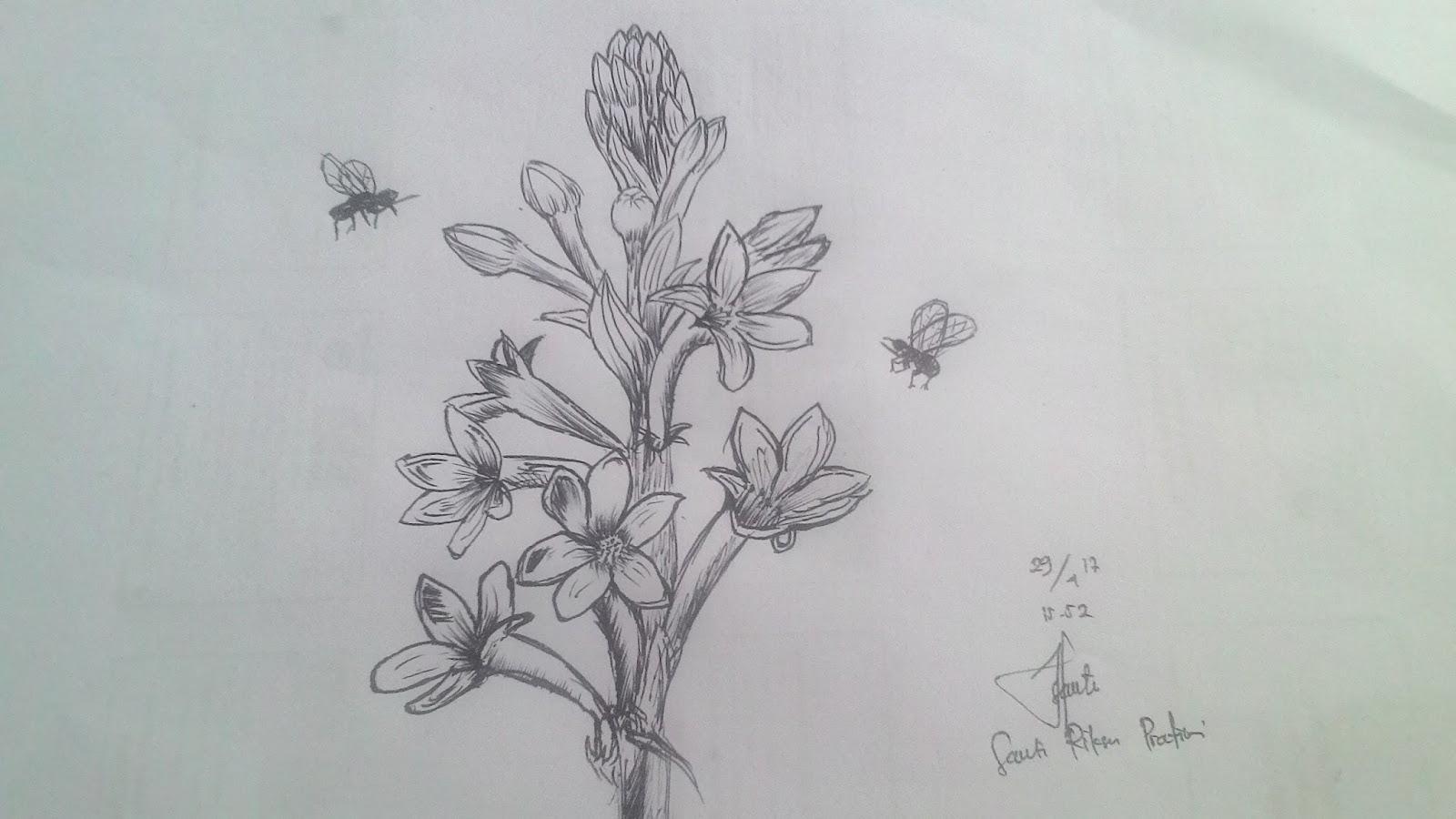 Sketsa Bunga Sedap Malam Kata Kata Bijak