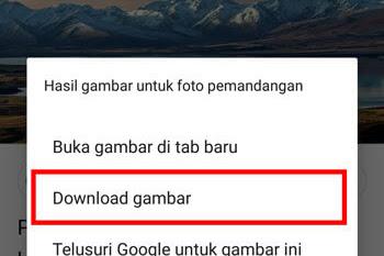 3 Cara Menyimpan Gambar dari Google ke Galeri HP Android