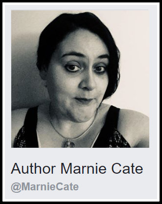 Author Facebook Page