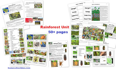 http://homeschoolden.com/2017/05/14/rainforest-unit-50-page-packet/