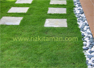 Tukang rumput murah | jual rumput taman | jasa tanam rumput | rumput gajahmini,swiss,jepang,babat,manila