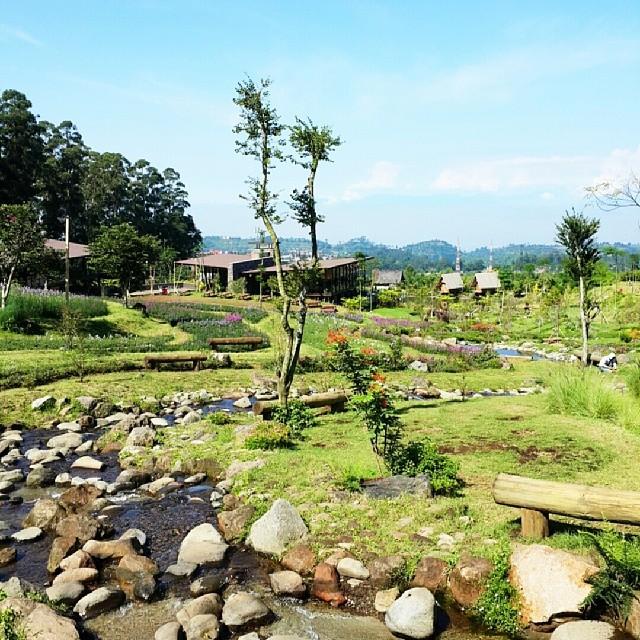 foto pemandangan pagi hari dusun bambu