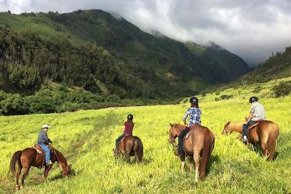 Cabalgata - Una experiencia única en Maui