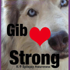 """Live Gib Strong"" K-9 Epilepsy Awareness Campaign"