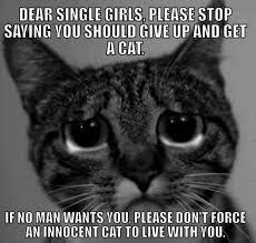 Cat Quotes